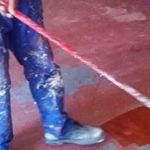 damp treatment johannesburg