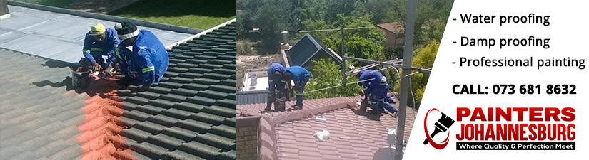 painter in sandton